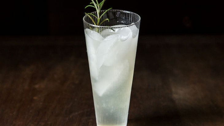 Rosemary Gin Cocktail | Drinks & cocktails | Pinterest