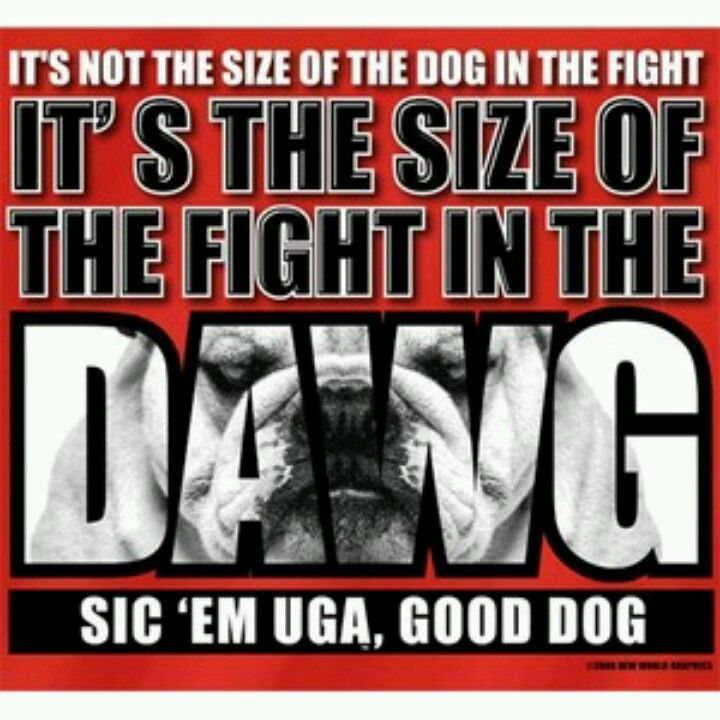Georgia Bulldog Sayings And Quotes Quotesgram