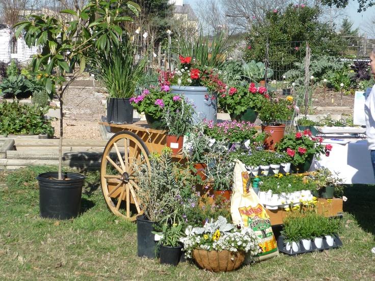 Community Garden Ideas Ideas Small