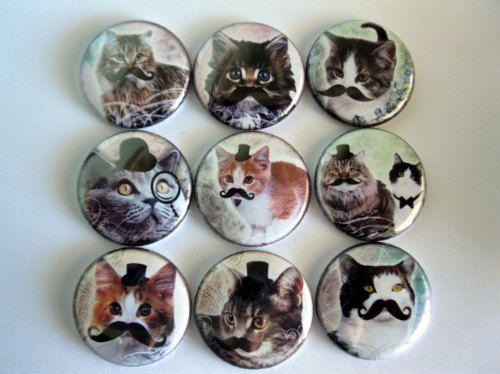 cat mustache magnets - haha!