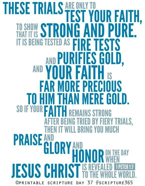 Test bible quotes