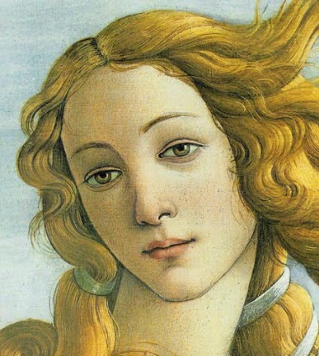 Botticelli Venus | Art | Pinterest - 167.0KB