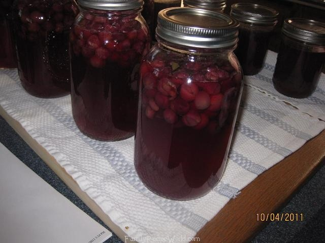 concord grape drink | Canning & Preserving | Pinterest