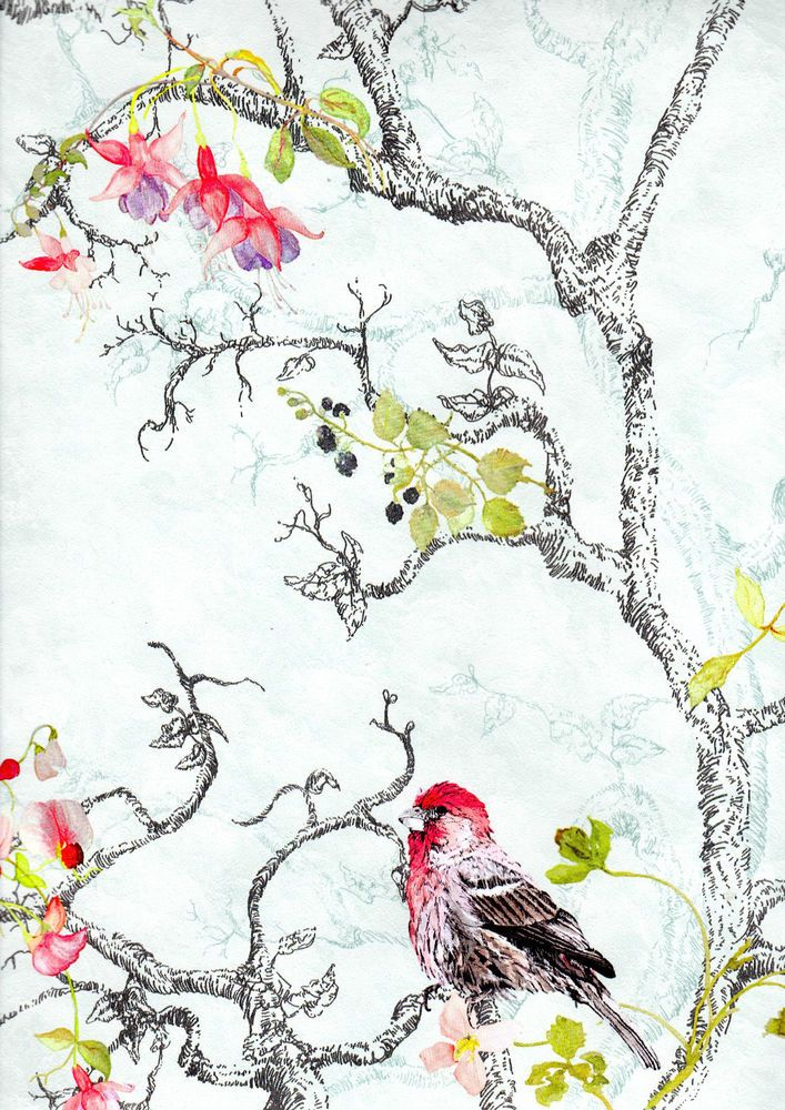 Wallpaper Designs With Birds : Vintage bird floral print vibrant feature wallpaper