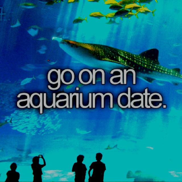 Tips For a Fun First Date: An Aquarium