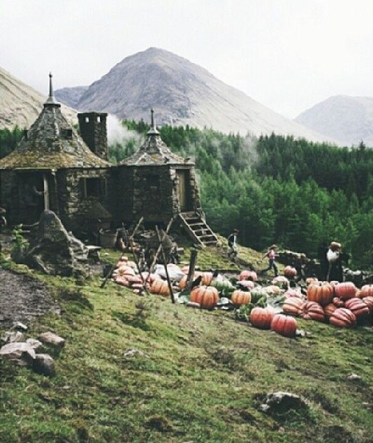 Hagrid 39 s hut dream house pinterest What house was hagrid in