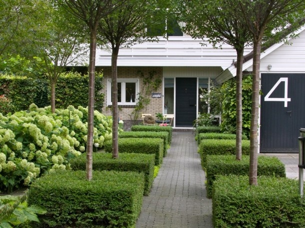 Voortuin. Leuke blokken met boompje erin Door claudiabijvoet - so simple and perfect - less is more.  The topiary contrasts beautifully with the Hydrangea bed to the left.