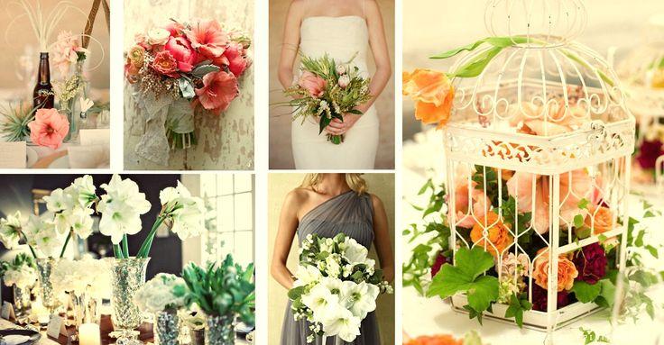 Todo tipo de flores
