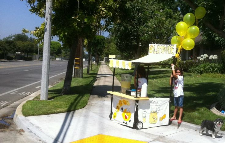 portable pvc lemonade stand diy kids pinterest