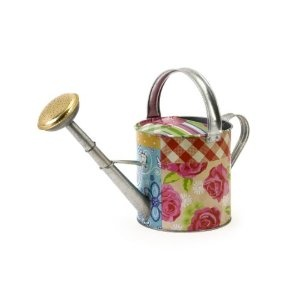Decorative Watering Can For The Home Pinterest