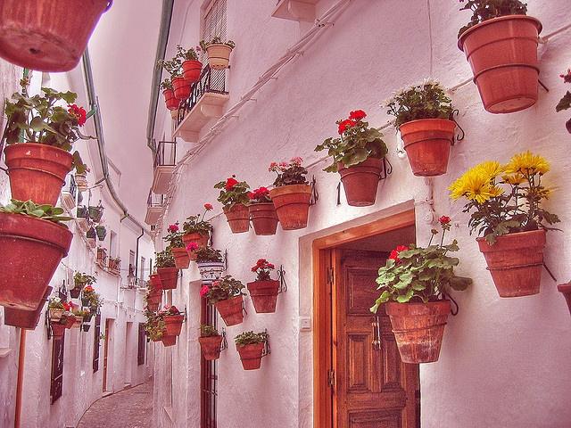 Priego de Córdoba♥