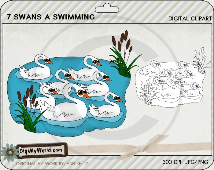 Swans a Swimming - sevenfold gifts of the Holy Spirit