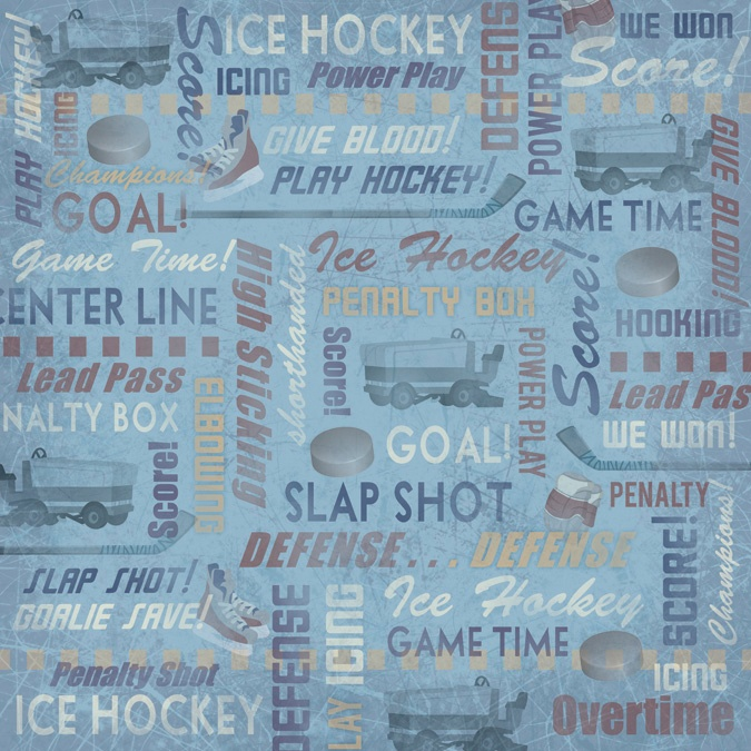 Essay on hockey