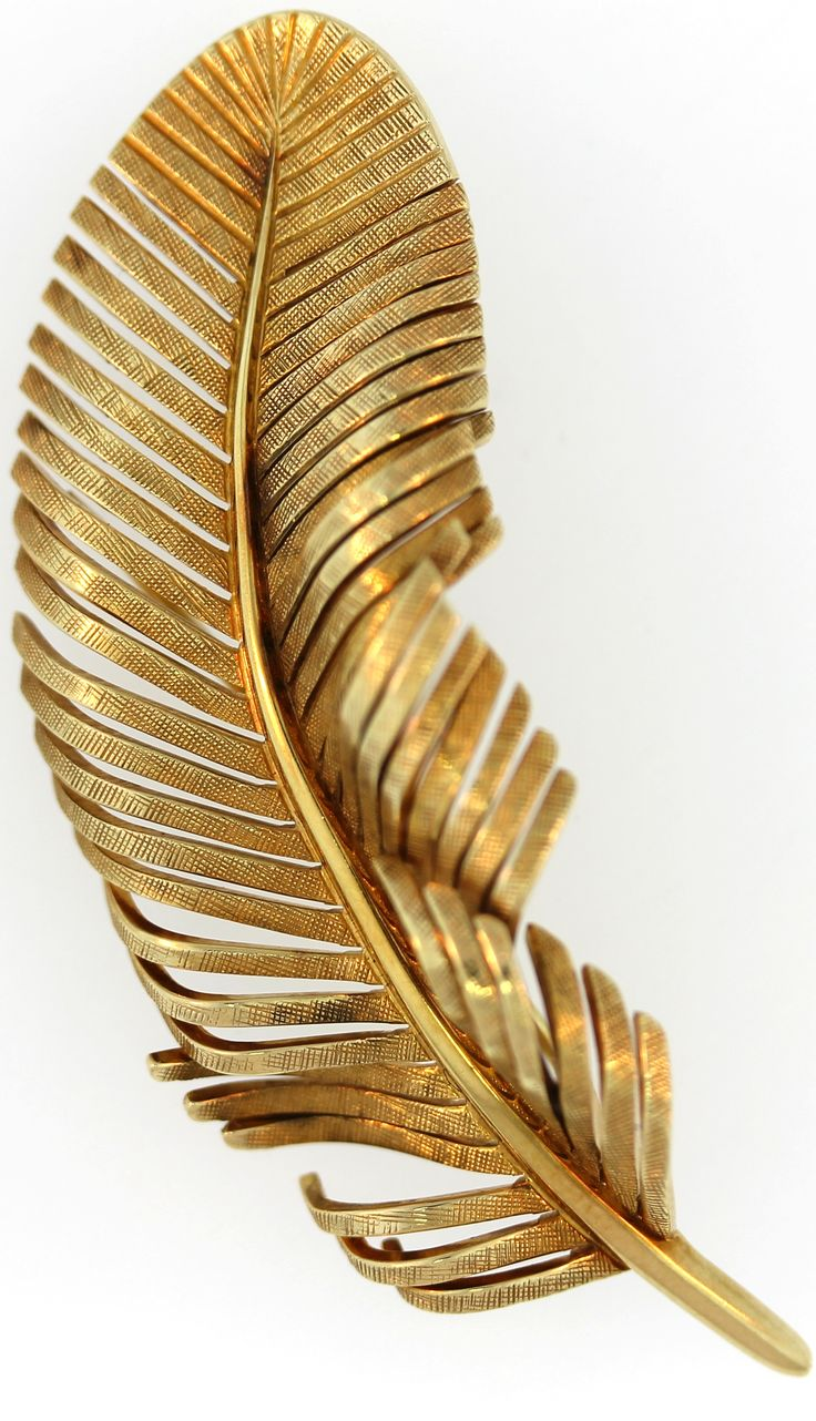 golden feather | Charley's apt