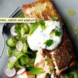 Spiced salmon with cucumber, radish and yoghurt