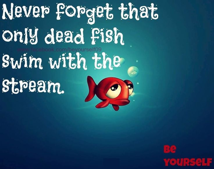 Fish motivational quotes quotesgram for Quotes about fish