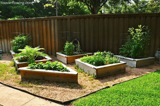 It's Overflowing: How to Build and Arrange a Raised Vegetable Garden