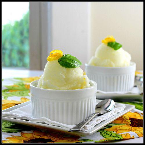 Lemon and Basil Sorbet | Scoops - Ice Cream, Gelato, Sorbets & Sherbe ...