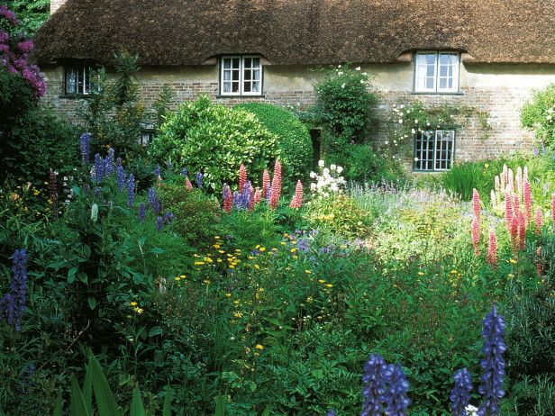 Cottage garden lovely for Cottage garden design
