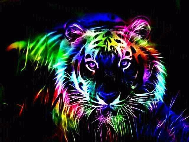 Tiger rainbow colored bright and beautiful colors for Bright pretty colors
