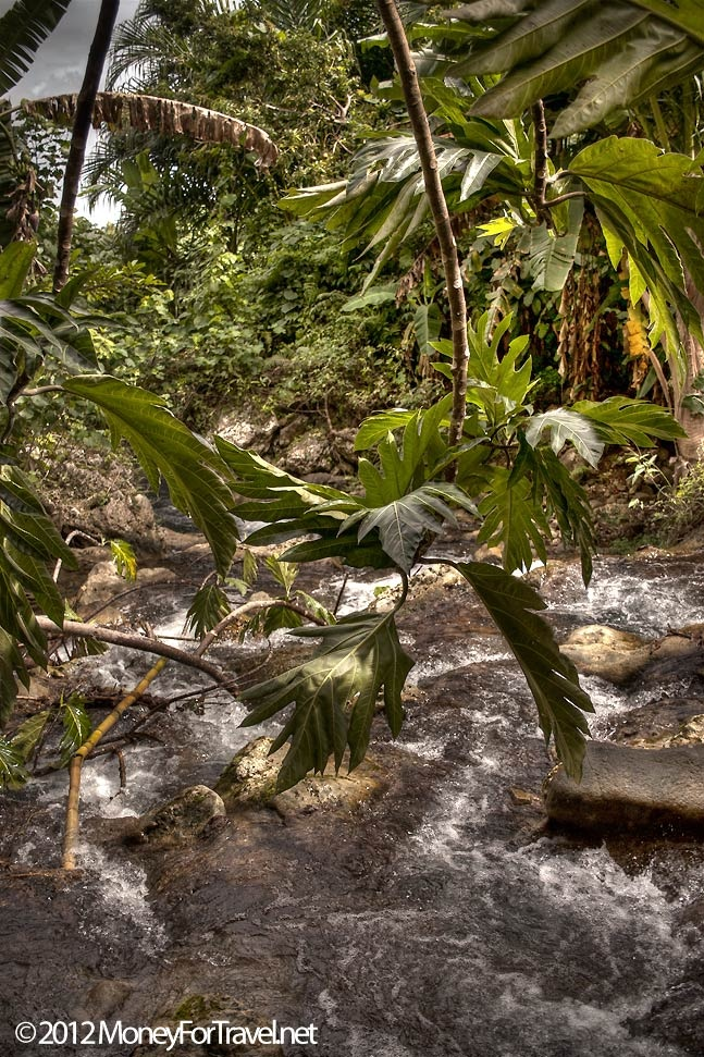 land divers of pentecost island vanuatu