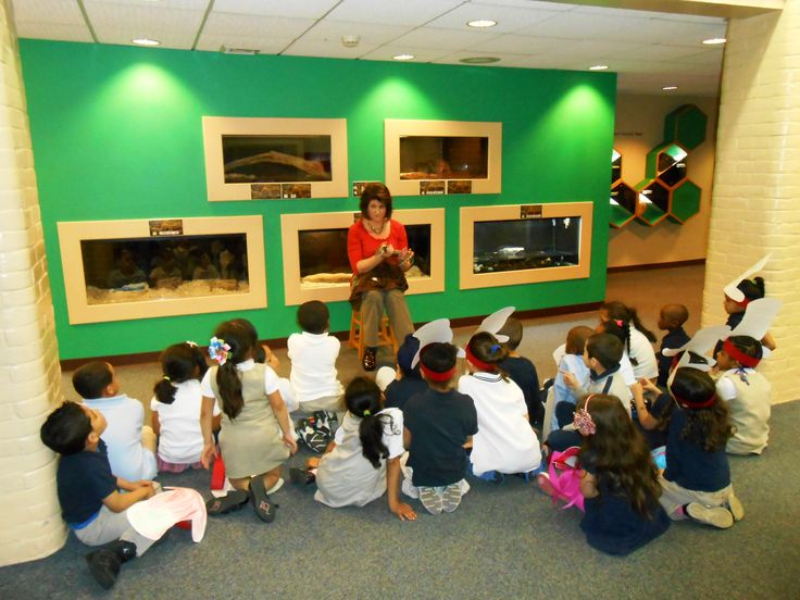 Preschool students interact with Blue, our Blue-tongued Skink during a recent Live Reptile Demonstration.