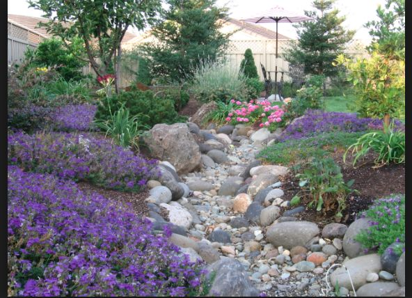 Dry River Bed Garden Pinterest