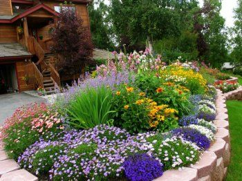 Front yard love this flower bed front yard landscaping for Front yard flower beds