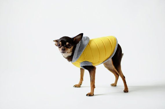 Sleeveless jacket dog chihuahua clothes dog apparel - Dog clothes for chihuahuas ...