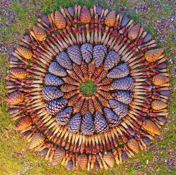 Pinecone Mandala by Kathy Klein