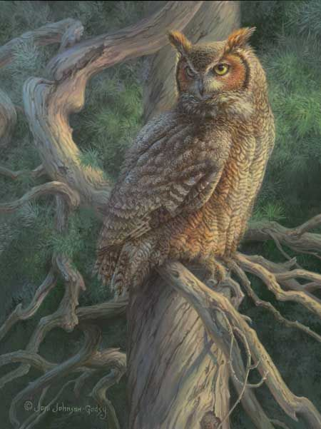 How To Canvas Paint An Owl