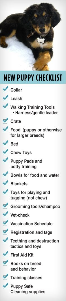 Our New Puppy Checklist! I could shorten this list a tad.
