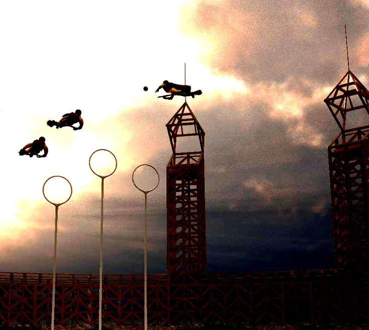 Quidditch Field...