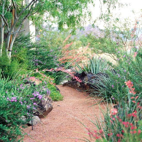 Easy care desert landscaping ideas for Easy care front gardens
