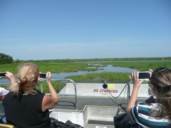 Airboat Ride  Florida