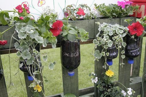mini jardim em garrafas:Plastic Protect Plants Cold
