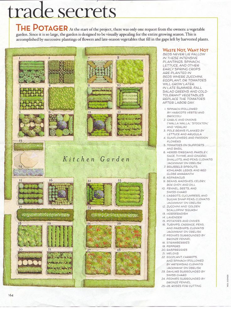 kitchen garden plans garden plans planting designs