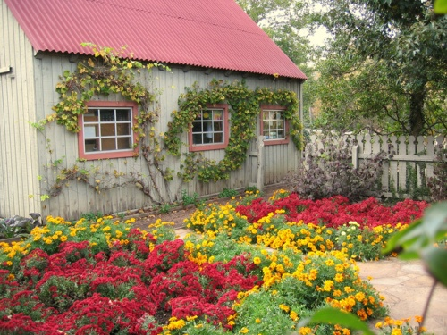 Red & Yellow Garden