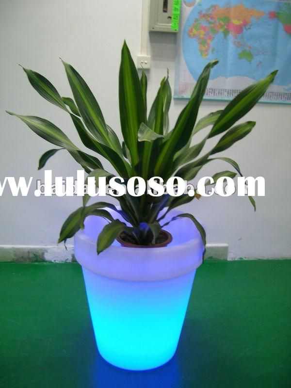 Colorful led light plant pot gifts for the ladies pinterest - Indoor colorful plants ...