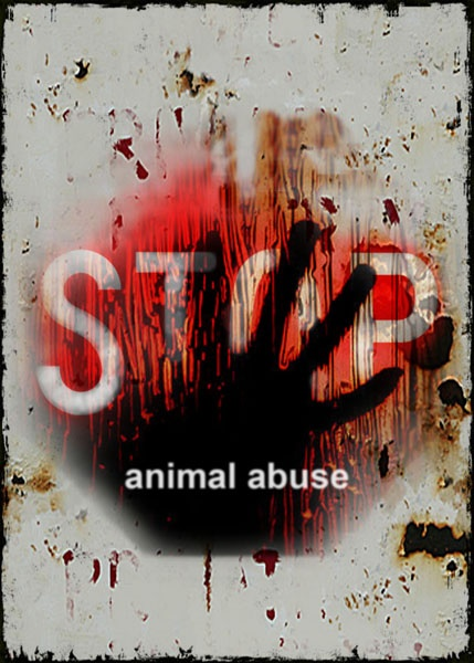 STOP animal abuse! They depend on us