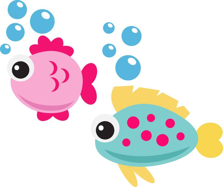 Cute Fish 40 Off For Members