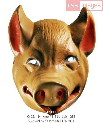 hog / warthog