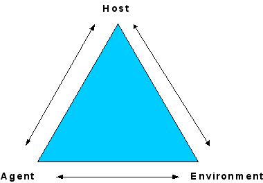 epidemiological triangle model of alcoholism The epidemiologic triangle is a model for explaining the organism  thrive, as  might the quality of drinking water or the accessibility of adequate.