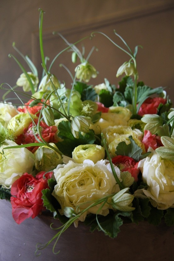 Ranunculus and fritillaria flowers pinterest