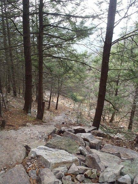 Part of the thousand steps trail near huntingdon pa