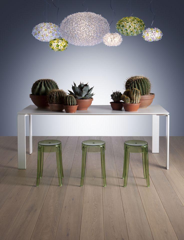 lampadario bloom kartell : Living in bloom! Lamp Pinterest