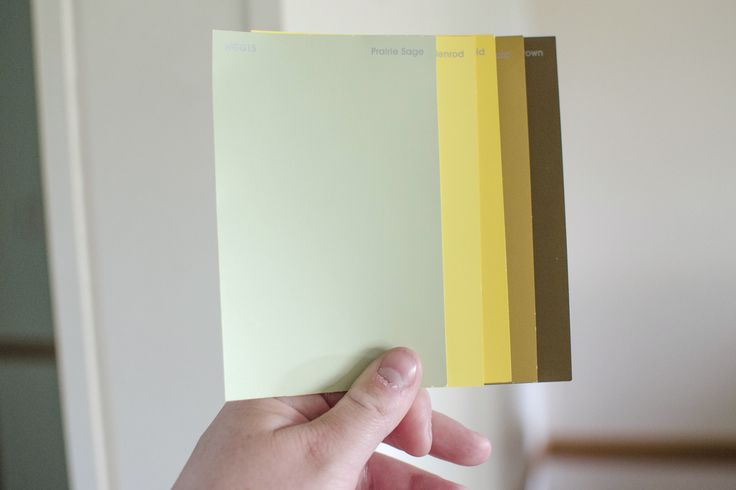 what colors go with sage green wall paint