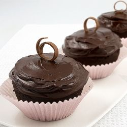 Devil's Food Cupcakes with luscious Chocolate Ganache Frosting