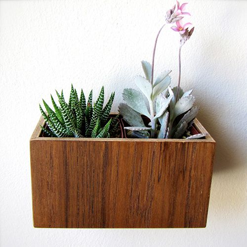 Wood Wall Planter Planties Pinterest