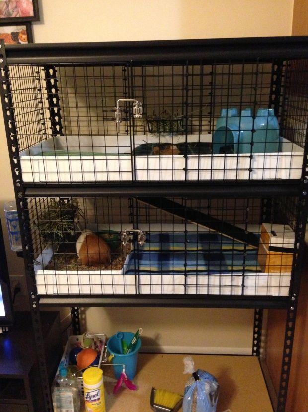 Diy utility shelf guinea pig cage hamsters pinterest for Guinea pig cage made from bookshelf